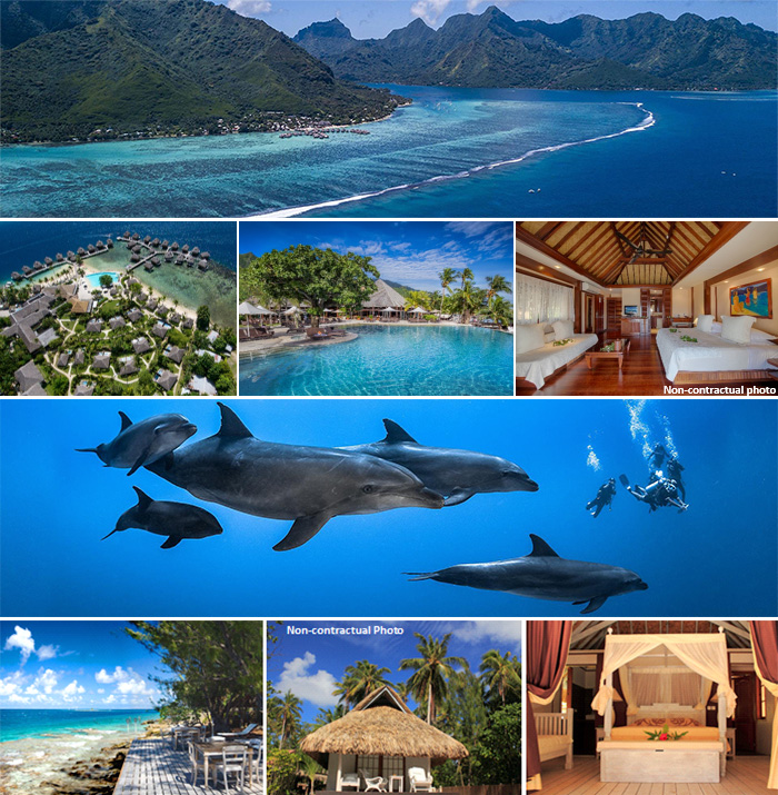 French Polynesia Special Offer