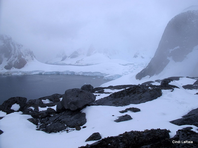 Antarctic Peninsula Basecamp, On board the M/V Plancius, March 3-14 2015 Trip Report - Page Six