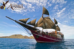 Indonesia Group Trip - Arenui Liveaboard  - Forgotten Islands  Sep 4-15 2016 Group Trip