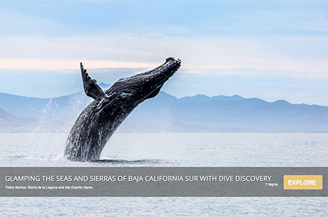 Glamping the Seas and Sierras of Baja California Sur with Dive Discovery