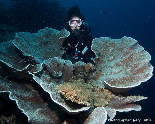 Cindi with Wobegon shark in a hard coral photo by Jerry Tuttle