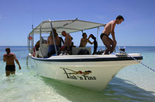 Fish 'n Fins - Dive Operators - Dive Discovery Micronesia