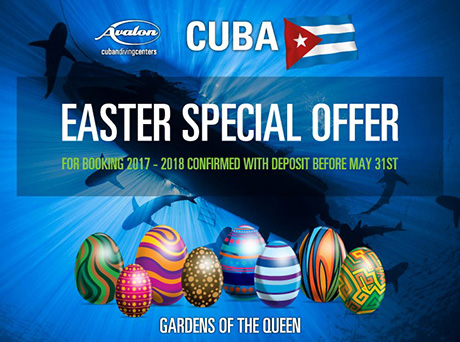 Scuba in Cuba Easter deals!