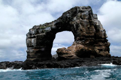 Scuba Dive Galapagos aboard Majestic Explorer - August 10-17 2019 Group Trip