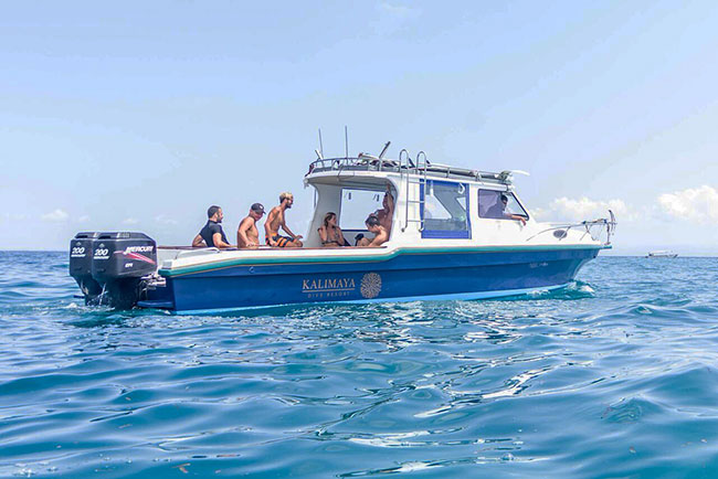 Dive boat - Kalimaya Dive Resort - Indonesia Dive Resorts