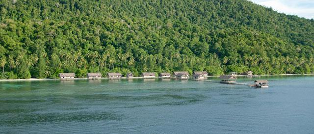 Kri island resort raja ampat dive resort dive discovery indonesia - Raja ampat dive resort ...