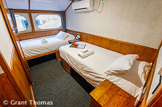 Twin cabin - MV Oceania