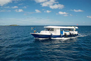 MV Virgo - Maldives Liveaboards - Dive Discovery Maldives