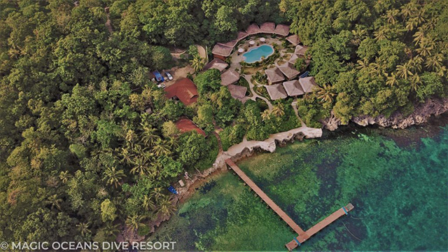 Magic oceans dive resort philippines dive resorts dive discovery philippines - Magic oceans dive resort ...