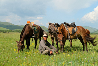 Mongolian man with his horses - Mongolia, July 14-August 1 2021 Group Trip