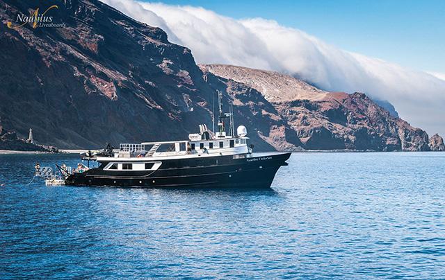 Nautilus UnderSea - Socorro Liveaboards - Dive Discovery Socorro Island