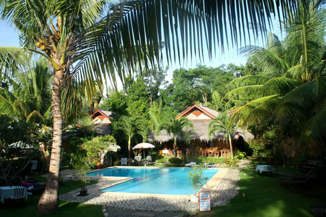 Oasis Resort Philippines Dive Resorts Dive Discovery