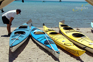 Kayaks - San Ignacio - Pacific Gray Whales - 3 Nights/4 Days