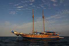 MS/Y San Marco - Red Sea Liveaboards