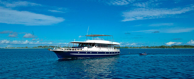 MV Sea Spirit - Maldives Liveaboards - Dive Discovery Maldives