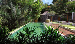 The Purist Villas and Spa - Resorts in Bali - Dive Discovery Indonesia