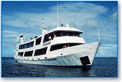 Odyssey - Micronesia Liveaboards - Dive Discovery Micronesia