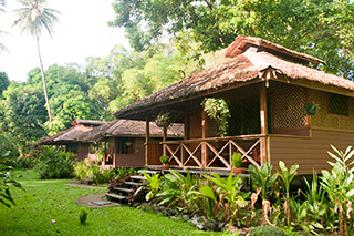 Bungalow - Walindi Plantation Resort - PNG Dive Resorts