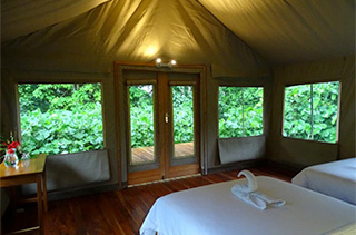 Tented camp at Scalesia Lodge
