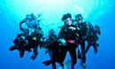 Dive Discovery Group Trips