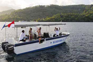 Lembeh Cottages - Indonesia Dive Resorts - Dive Discovery Indonesia