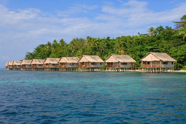 Papua paradise eco resort indonesia dive resorts dive discovery indonesia - Raja ampat dive resort ...