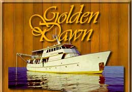 Golden Dawn - PNG Liveaboards - Dive Discovery PNG