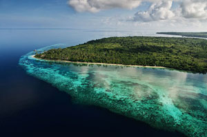 Wakatobi Dive Resort - Indonesia Dive Resorts - Dive Discovery Indonesia
